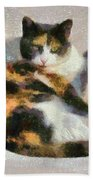Cat On Chair Beach Towel