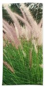 Cat Tails Beach Towel