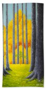 Cathedral Beach Towel