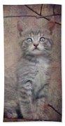 Cat's Eyes #02 Beach Towel