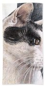 Cats View Beach Towel