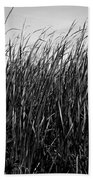 Cattail Reed Background Beach Towel