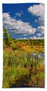 Cattails And Clouds Beach Towel