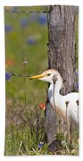 Cattle Egret At Fenceline Beach Towel