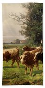 Cattle Heading To Pasture Beach Towel