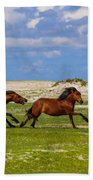 Cedar Island Wild Mustangs 51 Beach Towel