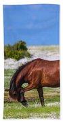 Cedar Island Wild Mustangs 59 Beach Towel