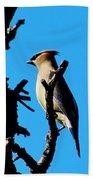 Cedar Waxwing In Tree 030515aaa Beach Towel