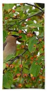 Cedar Waxwing Beach Towel