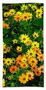 Celebration Of Yellows And Oranges Study 3 Beach Towel