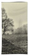 Cemetery Trees In The Fog E185 Beach Towel