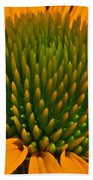 Center  Of Cone Flower Beach Towel