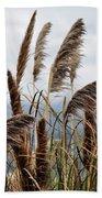 Central Coast Pampas Grass Beach Towel