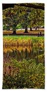 Central Park In Autumn - Nyc Beach Towel