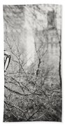 Central Park Lamppost In New York City Beach Towel
