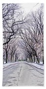 Central Park Mall In Winter Beach Towel