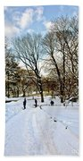 Central Park Snow Storm One Day Later2 Beach Towel
