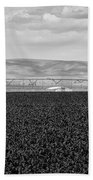 Central Washington, Usa. A Crop Duster Beach Towel