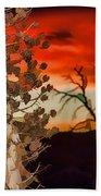 Century Soldier Sunset Beach Towel