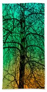 Change Of Seasons Number Tw0 Beach Towel