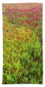 Changing Landscape I Beach Towel