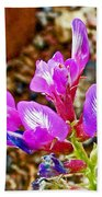 Chaparral Pea In Painted Desert Of Petrified Forest National Park-arizona  Beach Towel