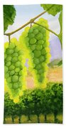 Chardonnay Grapes Beach Towel by Mike Robles