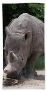 Waco Texas Rhinoceros Beach Towel