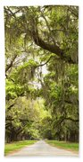 Charleston Avenue Of Oaks Beach Towel