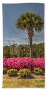 Charleston In The Spring Beach Towel