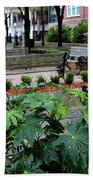 Charleston Waterfront Park Benches Beach Towel by Carol Groenen
