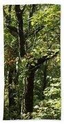 Chattahoochee Riverwalk Beach Towel