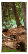 Cheakamus Lake Rainforest - British Columbia Beach Towel