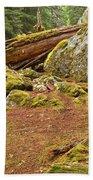 Cheakamus Rainforest Debris Beach Towel
