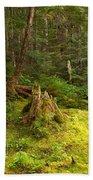 Cheakamus Rainforest Floor Beach Towel