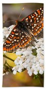 Checkerspot Butterfly On A Yarrow Blossom Beach Towel