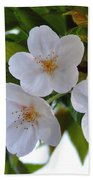 Cherry Blossom 2 Beach Towel