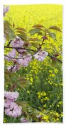 Cherry Blossom And Rapeseed Beach Towel
