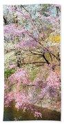 Cherry Blossom Land Beach Towel