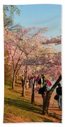 Cherry Blossoms 2013 - 007 Beach Towel