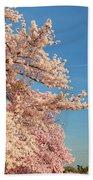 Cherry Blossoms 2013 - 014 Beach Towel