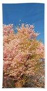 Cherry Blossoms 2013 - 016 Beach Towel