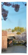Cherry Blossoms 2013 - 021 Beach Towel