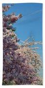 Cherry Blossoms 2013 - 046 Beach Towel