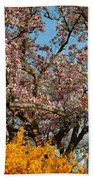 Cherry Blossoms 2013 - 051 Beach Towel