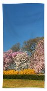 Cherry Blossoms 2013 - 052 Beach Towel