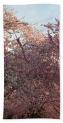 Cherry Blossoms 2013 - 065 Beach Towel