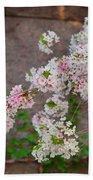 Cherry Blossoms 2013 - 067 Beach Towel