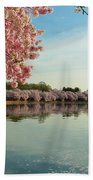 Cherry Blossoms 2013 - 084 Beach Towel