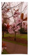Cherry Blossoms At Kirkland In Kendal Beach Towel